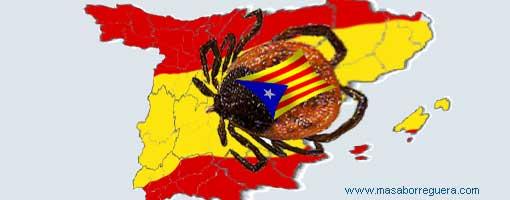 PONGA LO QUE USTED QUIERA - Página 5 Garrapata-catalana